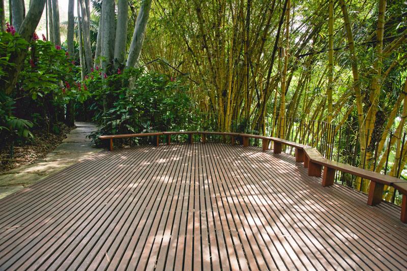 Deck Tamboril Foto William Gomes (4)