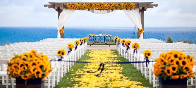 decoração do caminho até o altar com pétalas amarelas